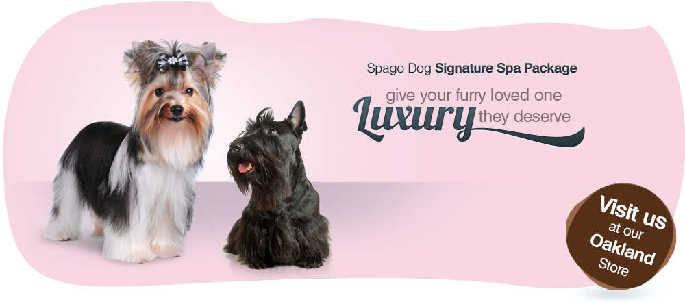 Spagodog Signature Spa Package