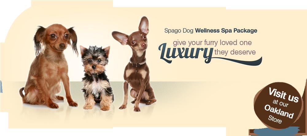 Spagodog Wellness Spa Package